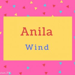 Anila Name Meaning Wind.
