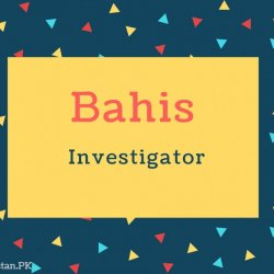 Bahis Name Meaning Investigator