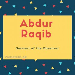 Abdur Raqib name meaning Servant of the observer.