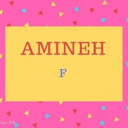 Amineh Name Meaning Faithful.