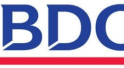 BDO Ebrahim & Co. Logo