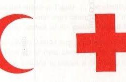 Ihsan Mumtaz Hospital - Logo