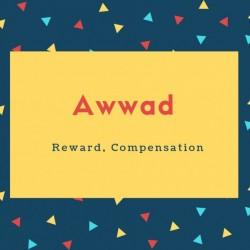 Awwad Name Meaning Reward,compensation