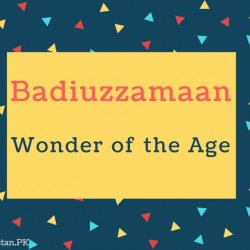 Badiuzzamaan Name Meaning Wonder of the age