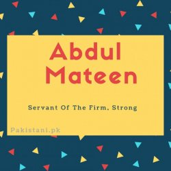 Abdul mateen name meaning Servant Of The Firm. Strong.