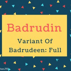 Badrudin Name Meaning Variant Of Badrudeen- Full Moon Of The Faith