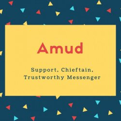 Amud Name Meaning Support, Chieftain, Trustworthy Messenger