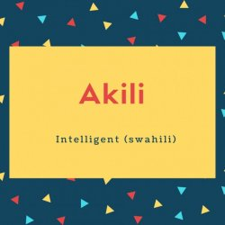 Akili Name Meaning Intelligent (swahili)