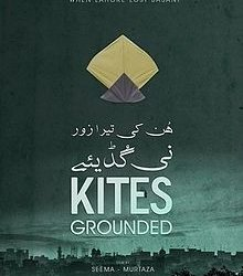 Kites Grounded 5