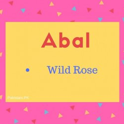 Abal Name Meaning Wild Rose.