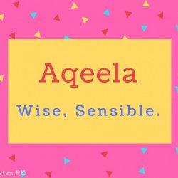 Aqeela Name Meaning Wise, Sensible..