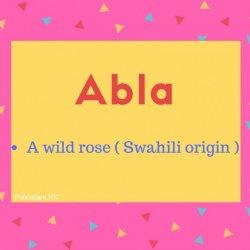 Abla Name Meaning A wild rose ( Swahili origin ).