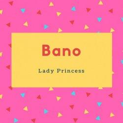 Bano Name Meaning Lady Princess