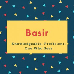 Basir Name Meaning Knowledgeable, Proficient, One Who Sees
