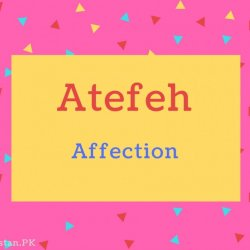 Atefeh name Meaning Affection.