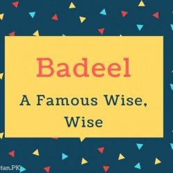 Badeel
