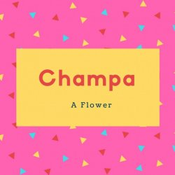 Champa Name Meaning A Flower