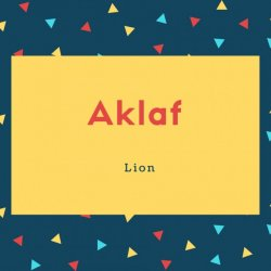 Aklaf Name Meaning Lion