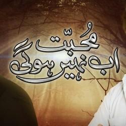 Muhabbat Ab Nahi Hugi - Full Drama Information