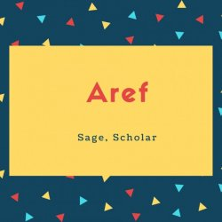 Aref Name Meaning Sage, Scholar