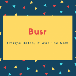 Busr Name Meaning Unripe Dates, It Was The Nam