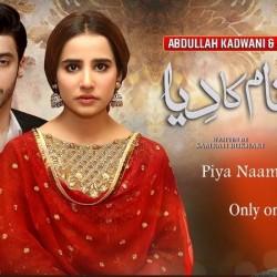 Piya Naam Ka Diya - full Drama Information