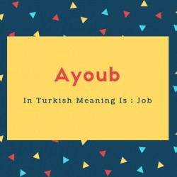 Ayoub Name Meaning In Turkish Meaning Is _ Job