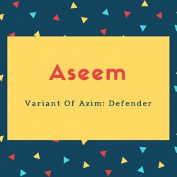 Aseem Name Meaning Variant Of Azim_ Defender