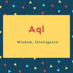 Aql Name Meaning Wisdom, Intelligence