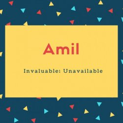 Amil Name Meaning Invaluable; Unavailable