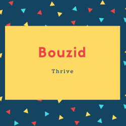 Bouzid Name Meaning Thrive