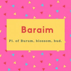 Baraim Name Meaning Pl. of Burum, blossom, bud.