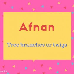 Afnan name meaning Tree branches or twigs