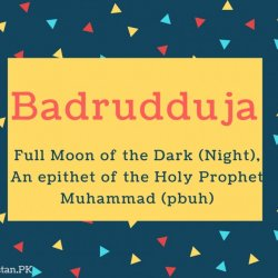 Badrudduja Name Meaning Full moon of the dark (night), An epithet of the Holy Prophet Muhammad (pbuh)