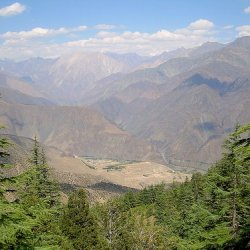 Chitral Gol National Park 1