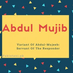 Abdul mujib name meaning Variant Of Abdul-Mujeeb- Servant Of The Responder.