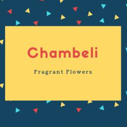 Chambeli Name Meaning Fragrant Flowers