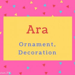 Ara Name Meaning Ornament, Decoration.