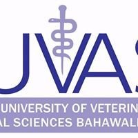 Cholistan University of Veterinary and Animal Sciences