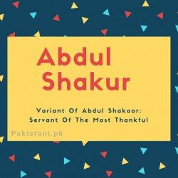 Abdul shakur name meaning Variant Of Abdul Shakoor- Servant Of The Most Thankful.jpg