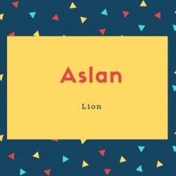 Aslan Name Meaning Lion