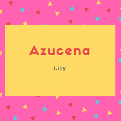 Azucena Name Meaning Lily