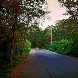 Margalla Hills 3