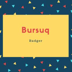 Bursuq Name Meaning Badger