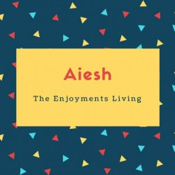 Aiesh Name Meaning The Enjoyments Living