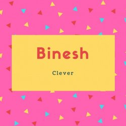 Binesh Name Meaning Clever