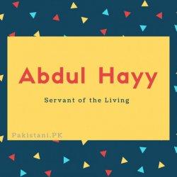 Abdul Hayy