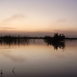Lake Mirpurkhas 1