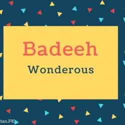 Badeeh name Meaning In Wonderous