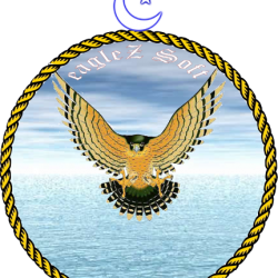 eagleZ Soft Logo